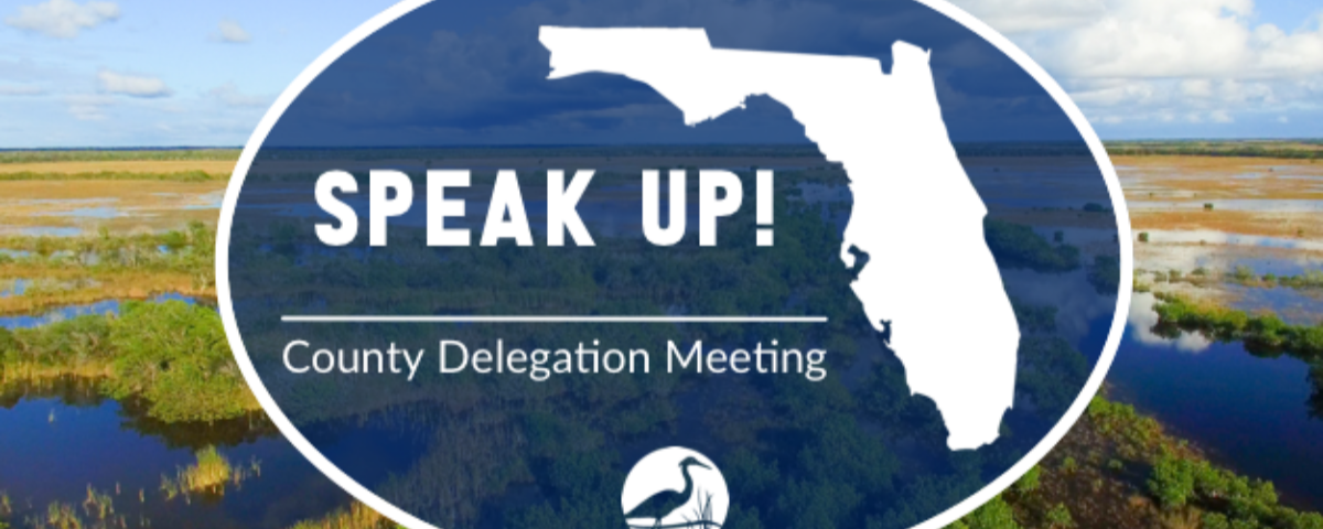 speak up: county delegation meeting