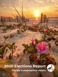 2020_Election_Report_pic